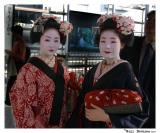 08 October Maiko:  Click here for my Japan Gallery