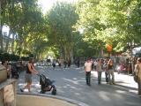 Cours_Mirabeau.jpg