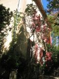 Cezanne_Atelier.jpg