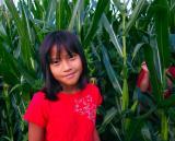 july 27 tall corn