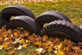 oct 25 leaves tires