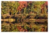 fallpallette.jpg