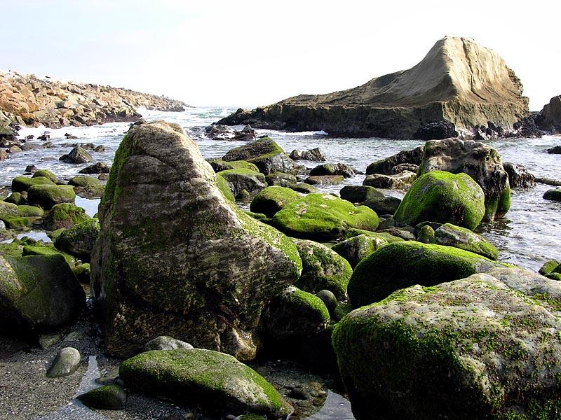 Dana Point ocean side