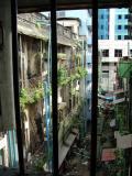 Through the Barred Window