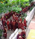 Many Monks