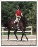 Liza_Horse_D2X_6848.jpg