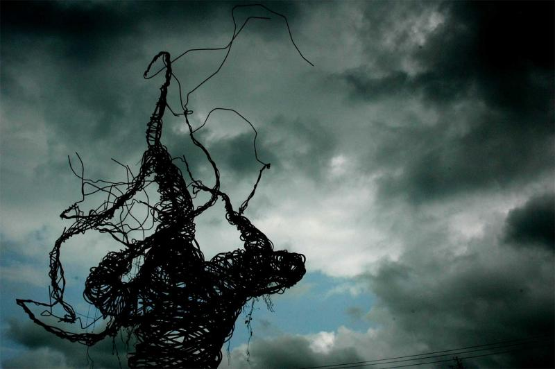 Spooky Phish Trees