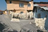 Ankara Yeni Dogan_0830.jpg
