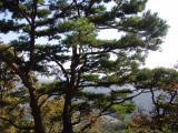 Chaeongsan Mountain