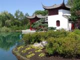 Chinese garden in botanical garden