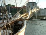 Loyal in Bergen