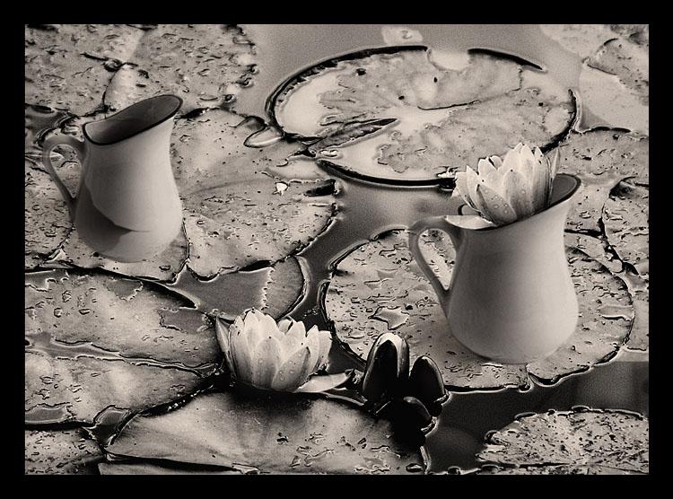 Teatime dream