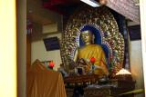 Dharamsala, Bhagsu, Mcleod Ganj, Norbulingka - Himachal Pradesh