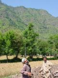 Workers in Jhelum Valley
