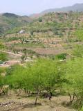Maneela near Kotli