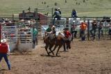 2005 Teller County Fair