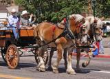 z EPR large horses IMG_0057+.jpg