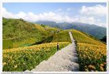 六十石山•Behind The Formosa