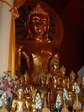 Golden Buddahs