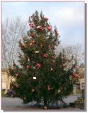Sapin de Noël, la Place