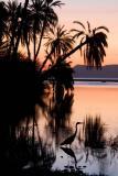 SunriseLagoon0060.jpg