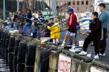 Fishing for Mackerels at the Harbour of Douarnenez