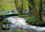 The Vrelo River