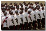 An Army of Officers *