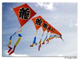 A Tail Of Kites *