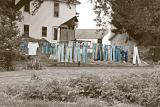 Amish Scenes