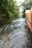 Pahang National Park.jpg