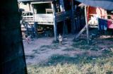 016 - Jimmy's (8th SPS K9 House Boy) village