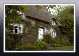 Another thatched house, Melbury Osmond (2924)