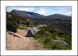 Footpath on the Cairngorms, Scotland