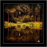 Reflections, Hestercombe Gardens, Taunton, Somerset