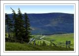 In the heart of the Cairngorms, Scotland