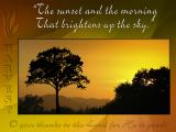 'The sunset and the morning' slide from the new Harvest series