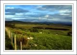 Between Tomintoul and Grantown, Morayshire, Scotland