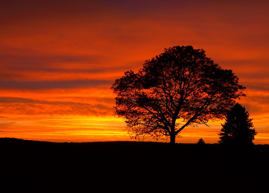 Haverhill Sunset Web.jpg