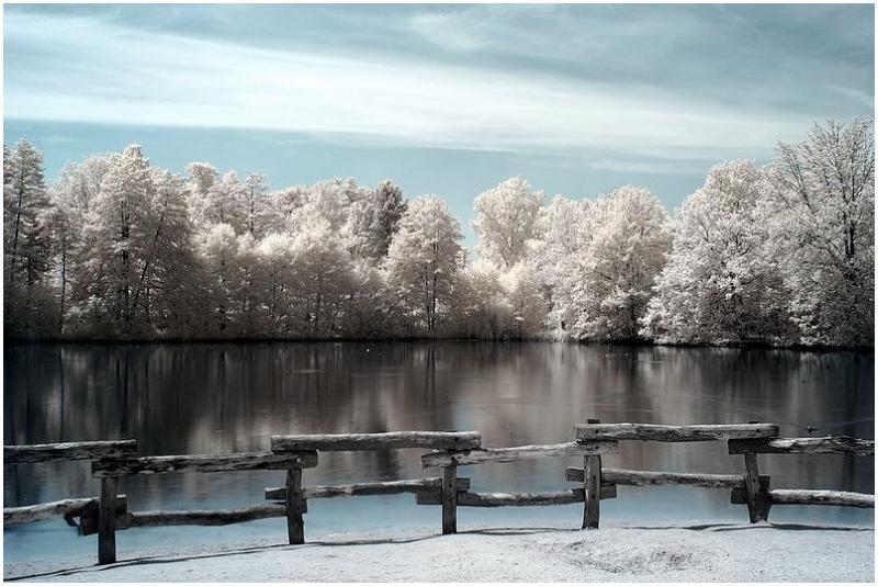 Local pond_b