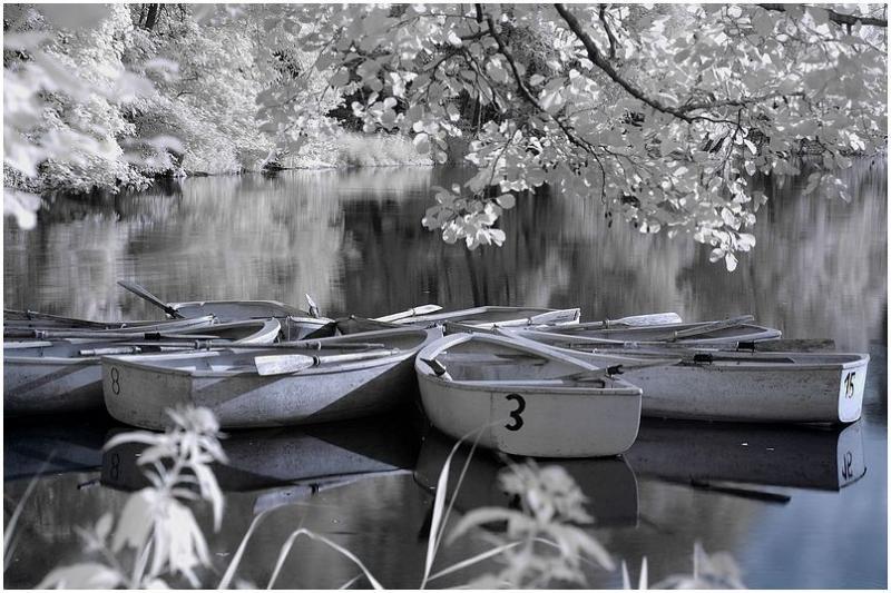 Boats_1