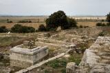 Troy, the Trojan Plain