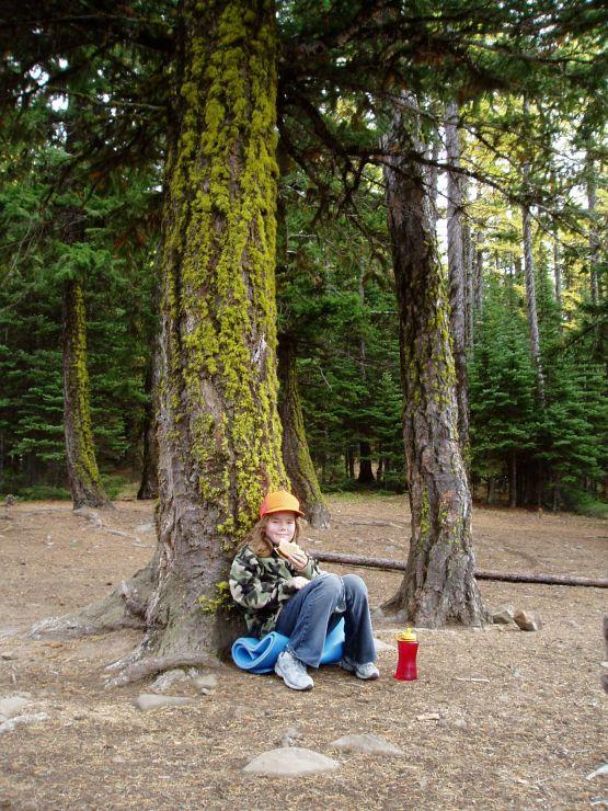 2005 October 8 Meagan lunch under a mossy tree.jpg