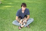 Adam's Bassett Puppies