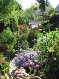 The gardens of Sansome and Beasley