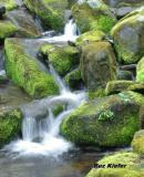 Small Green Cascade.jpg