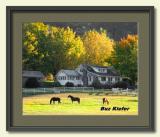 Horse and Home-framed.jpg