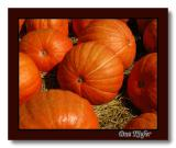 Roadside Pumpkins