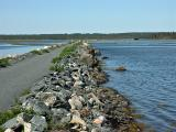 Salt Marsh, Cole Harbour.