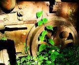 Trainwheel.